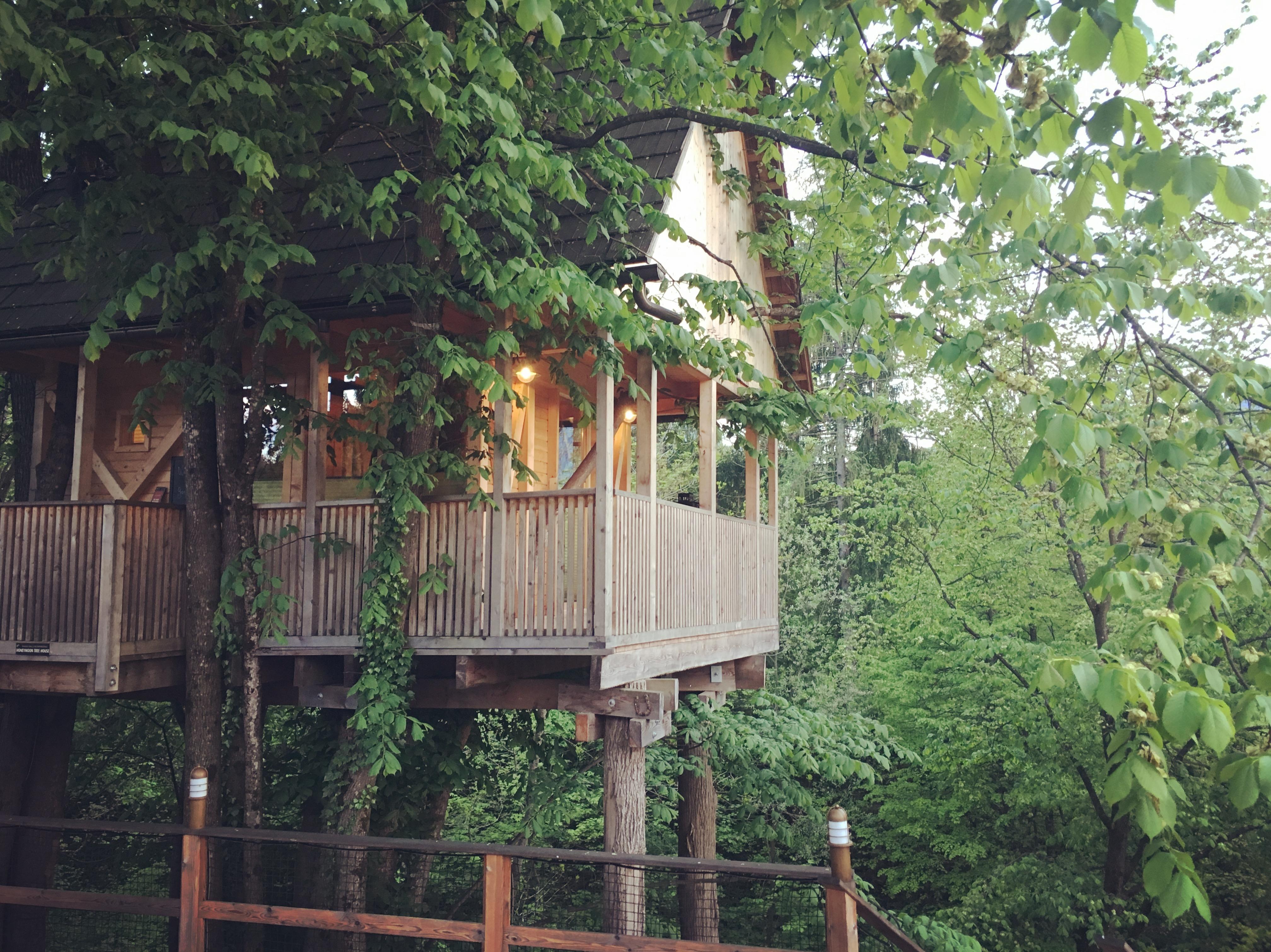 Casa Sull Albero Malga Priu Prezzi dove dormire sul lago di bled, slovenia- garden village bled